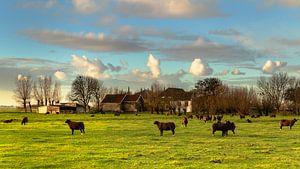 Een typisch Hollands tafereel van Eelco de Jong