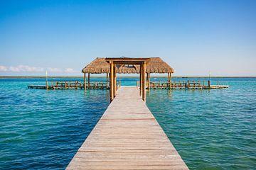 A pier in the village of Bacalar in Mexico von Michiel Ton