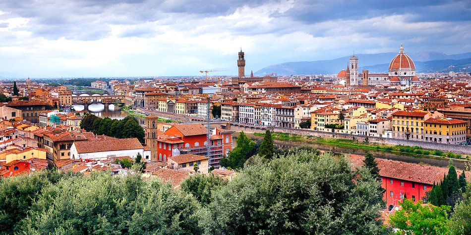 Uitzicht over Florence van Roy Poots