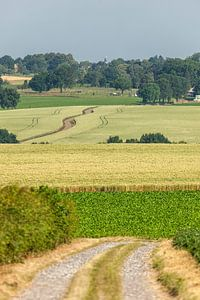 Typisch Zuid-Limburgs landschap in de buurt van Simpelveld van