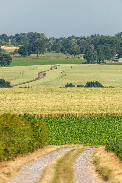 Typisch Zuid-Limburgs landschap in de buurt van Simpelveld van John Kreukniet