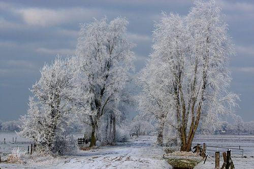 Rouveen, Winter van