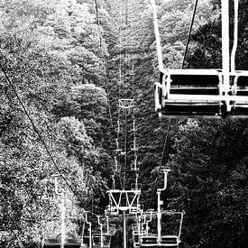 Vers le haut (en noir et blanc) sur Fotografie Jeronimo