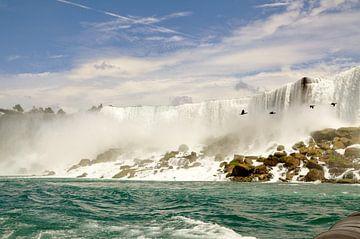 vogels bij de Canadese Niagara Watervallen van