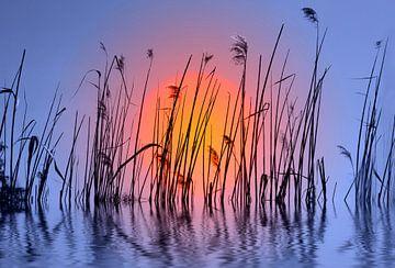 Sonnenuntergang  sur Violetta Honkisz