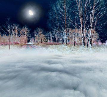 Magisch landschap met maan. van Corinne Welp