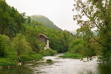 Grens Frankrijk Zwitserland van Martijn Diepenbach