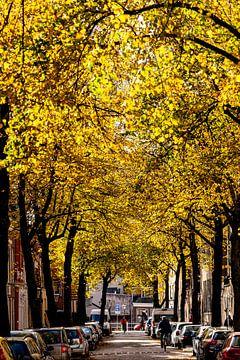 herfststraat van Langs Leidse Straten