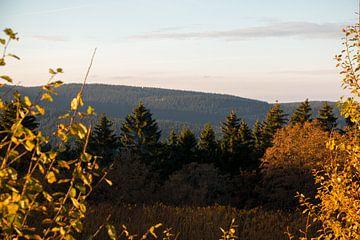Oberhof im Sonnenuntergang von Alexander Wolff
