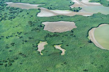 Luchtfoto Oostvaardersplassen natuurgebied van aerovista luchtfotografie