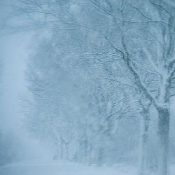 Abstraktes Foto mit Bäumen in einem Schneesturm von Edith Wijte