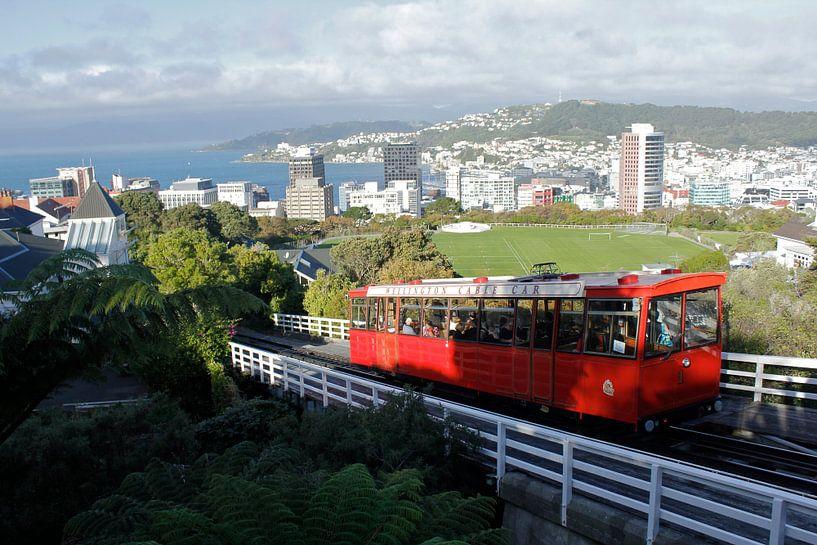 De Wellington kabelbaan van Inge Teunissen