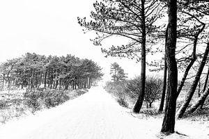 Winter op Terschelling (Klein Eldorado) van