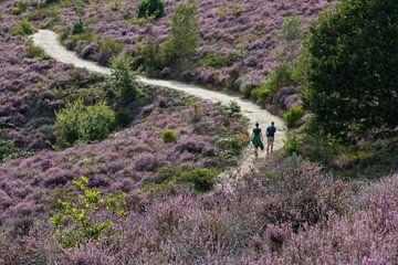 Walking the purple paradise van Esther Ehren