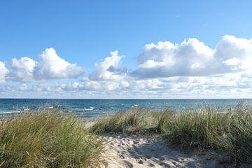 Ochtend aan de Oostzee van Ostsee Bilder