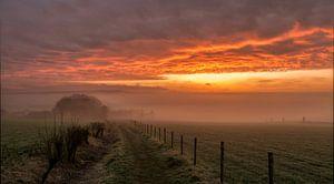 Mistige zonsopkomst in de buurt van Epen in Zuid-Limburg