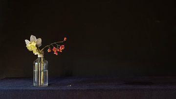 Stilleben Hellebolus dunkel von Studio Petra Moes