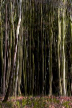 Dicht abstract wazig bos, lange boomstammen en bloemen op de grond, kunstnatuur achtergrond, kopieer van Maren Winter