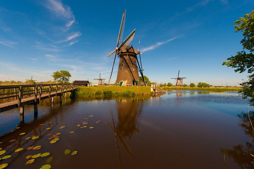 Kinderdijk Windmills  van Brian Morgan