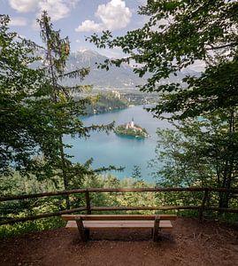 Meer van Bled, Slovenië van Willem van den Berge