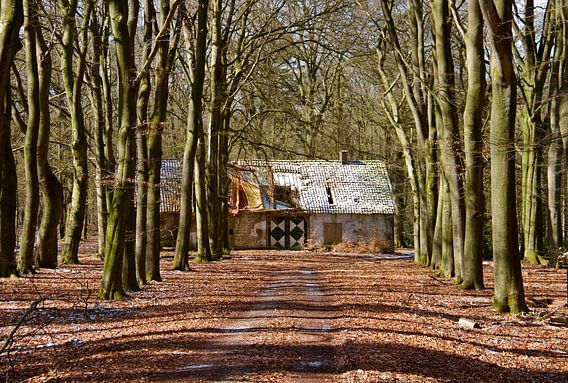 Vervallen huis in het Deelerwoud van Gerda H.