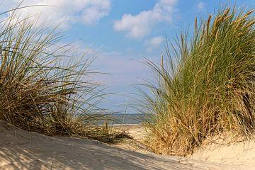 Sommertag .. von Miranda van Hulst