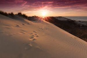 Zonsondergang in de duinen van Westduinpark Den Haag van