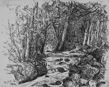 Waldbach in den Ardennen von Paul Nieuwendijk