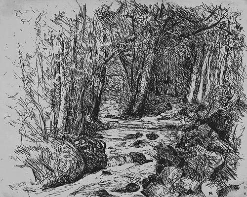 Bosbeek in de bossen van de Ardennen