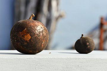 Grote  en kleine kalebas von Vincent Bicentini