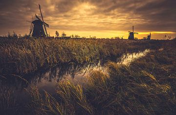 Sturmwarnung von Joris Pannemans - Loris Photography