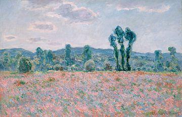 Poppy Field, Claude Monet sur