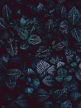 Bovenaanzicht Bladeren vetplanten - Illustratie met veel diepte van The Art Kroep