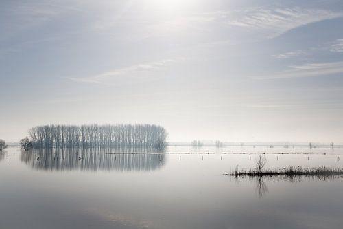 Mist over de IJssel van