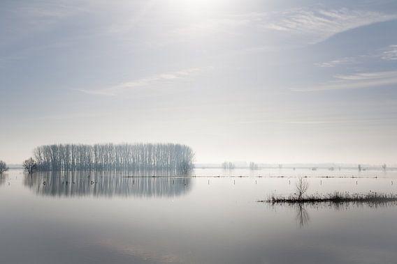 Mist over de IJssel van Jim van Iterson