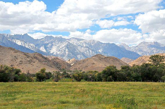Sierra Nevada van Paul van Baardwijk