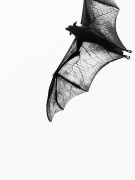 Bat wings van Rebecca Gruppen