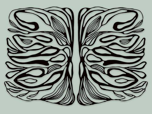 Life symmetries, zwart van Cora Verhagen