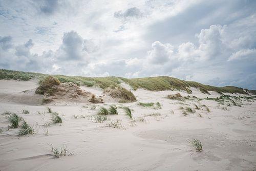 Donkere wolken boven de duinen op  het Noordzeestrand bij Slufter op Texel van