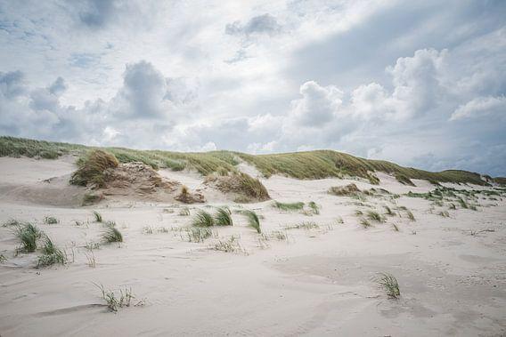 Donkere wolken boven de duinen op  het Noordzeestrand bij Slufter op Texel