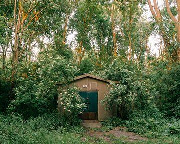 C4 Overgrown von Koen van der Lee