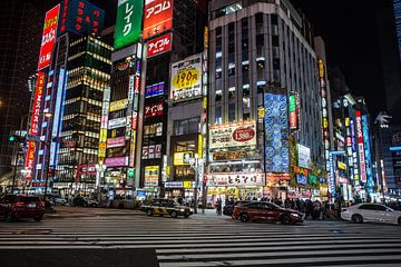 Tokio in de nacht van Armin Palavra