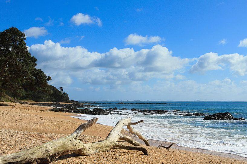 Coopers Beach, New Zealand van Niels Heinis
