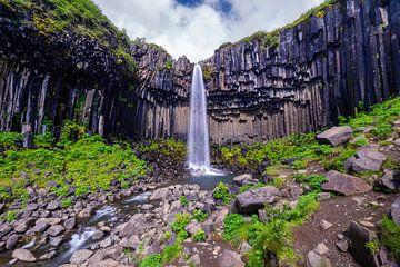 Svartifoss Wasserfall Island von Nana Design