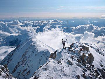 Bergsteiger am Mount McKinley von Menno Boermans