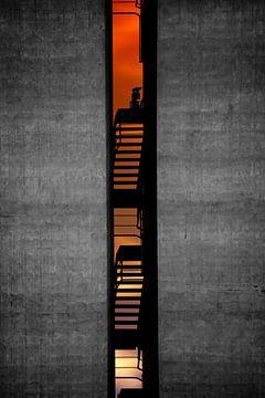 Tussen de muren, Bastian Kienitz van 1x