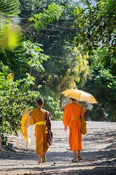Two young Buddhist monks in Luang Prabang, Laos von Fleur Halkema