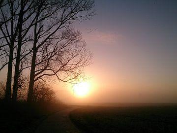 Wintersonnenaufgang zwischen Feldern und Wald mit Nebel. von Deborah Blanc