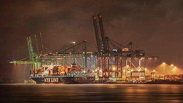 Verlichte container lossen schip met reusachtige kranen, Antwerpen van Tony Vingerhoets