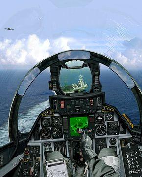 F-14A carrier landing van Cornelisz van de Beste